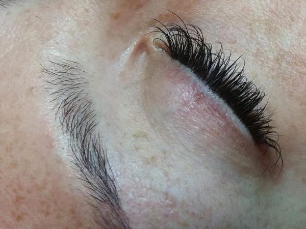Eyelash & Eyebrows